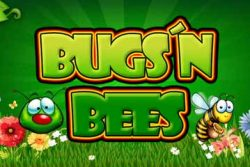 Bugs Bees