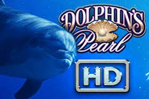 Dolphins-Pearl-HD